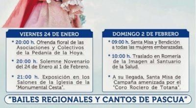 Cartel de la Romería de La Hoya 2020